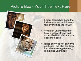 Lion savanna PowerPoint Templates - Slide 17