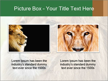 Lion savanna PowerPoint Templates - Slide 18