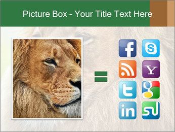 Lion savanna PowerPoint Templates - Slide 21
