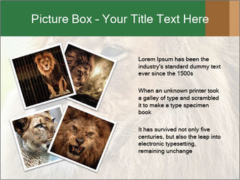 Lion savanna PowerPoint Templates - Slide 23