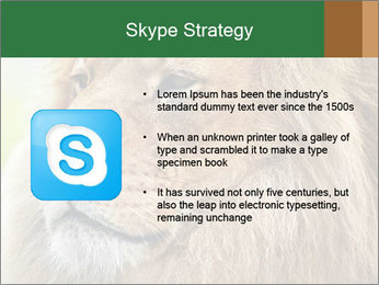 Lion savanna PowerPoint Templates - Slide 8