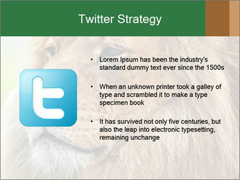 Lion savanna PowerPoint Templates - Slide 9