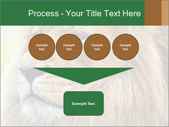 Lion savanna PowerPoint Templates - Slide 93