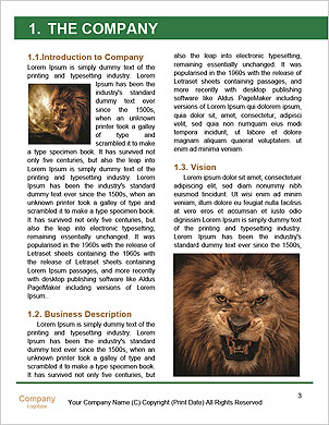 0000094688 Word Template - Page 3