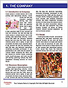 0000094694 Word Template - Page 3