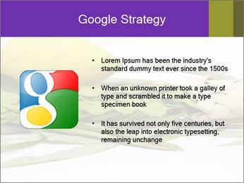 Etrog PowerPoint Template - Slide 10