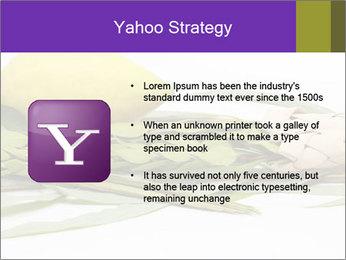 Etrog PowerPoint Template - Slide 11