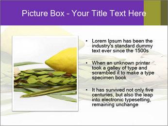 Etrog PowerPoint Template - Slide 13