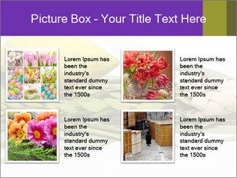 Etrog PowerPoint Template - Slide 14