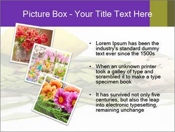 Etrog PowerPoint Template - Slide 17