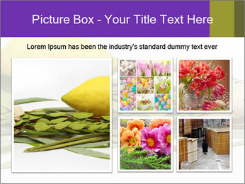 Etrog PowerPoint Template - Slide 19
