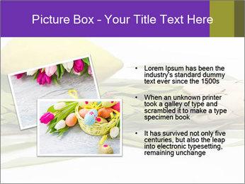 Etrog PowerPoint Template - Slide 20
