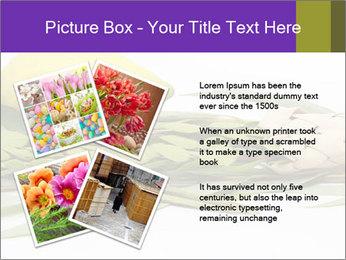Etrog PowerPoint Template - Slide 23