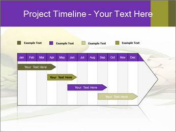 Etrog PowerPoint Template - Slide 25