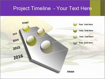 Etrog PowerPoint Template - Slide 26