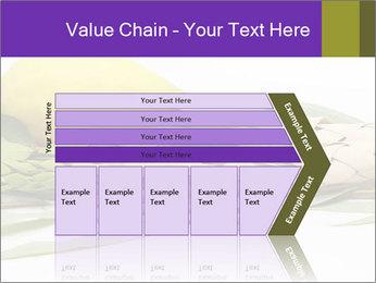 Etrog PowerPoint Template - Slide 27