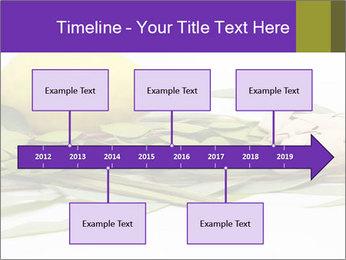Etrog PowerPoint Template - Slide 28