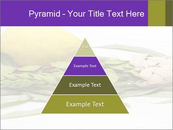 Etrog PowerPoint Template - Slide 30