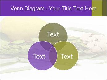Etrog PowerPoint Template - Slide 33
