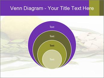 Etrog PowerPoint Template - Slide 34