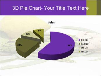 Etrog PowerPoint Template - Slide 35