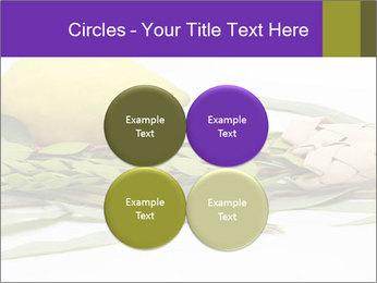 Etrog PowerPoint Template - Slide 38
