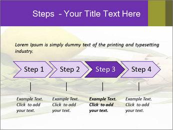 Etrog PowerPoint Template - Slide 4