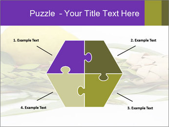 Etrog PowerPoint Template - Slide 40