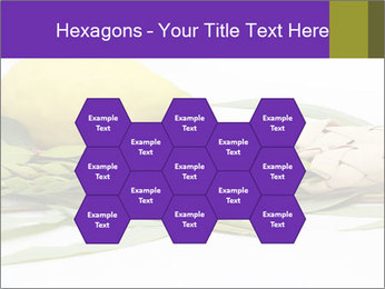 Etrog PowerPoint Template - Slide 44