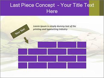 Etrog PowerPoint Template - Slide 46