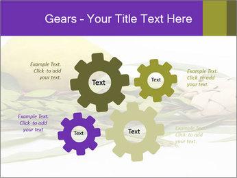 Etrog PowerPoint Template - Slide 47