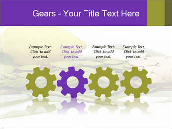 Etrog PowerPoint Template - Slide 48