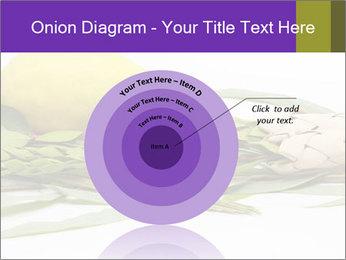 Etrog PowerPoint Template - Slide 61