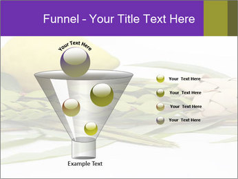 Etrog PowerPoint Template - Slide 63