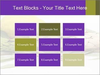 Etrog PowerPoint Template - Slide 68