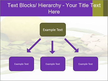 Etrog PowerPoint Template - Slide 69