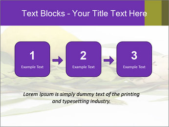 Etrog PowerPoint Template - Slide 71