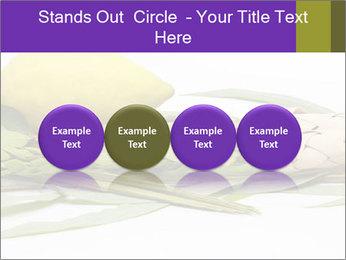 Etrog PowerPoint Template - Slide 76