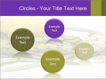 Etrog PowerPoint Template - Slide 77