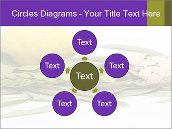Etrog PowerPoint Template - Slide 78