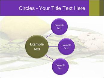 Etrog PowerPoint Template - Slide 79
