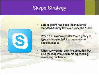 Etrog PowerPoint Template - Slide 8