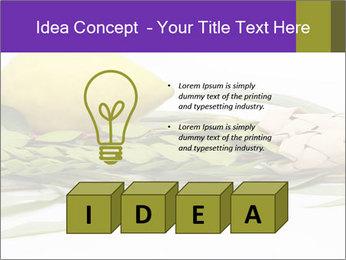 Etrog PowerPoint Template - Slide 80