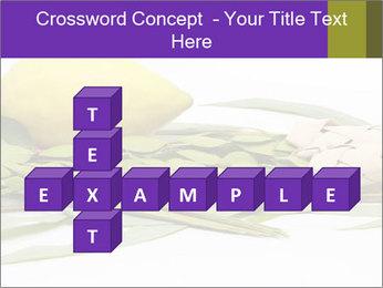 Etrog PowerPoint Template - Slide 82