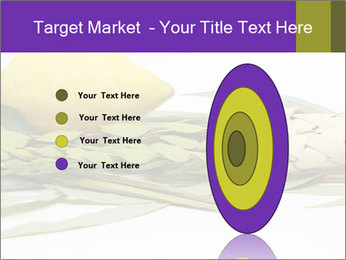 Etrog PowerPoint Template - Slide 84