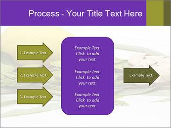 Etrog PowerPoint Template - Slide 85