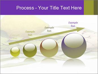 Etrog PowerPoint Template - Slide 87