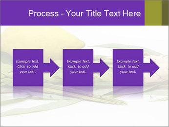 Etrog PowerPoint Template - Slide 88