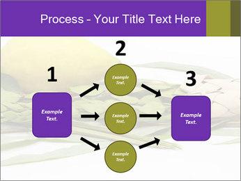 Etrog PowerPoint Template - Slide 92