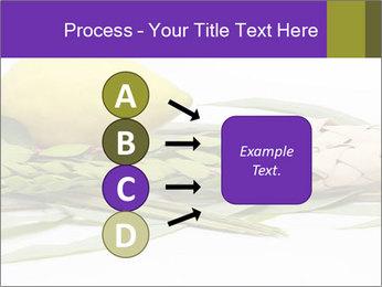 Etrog PowerPoint Template - Slide 94